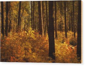 A Walk Through The Woods  Wood Print by Saija  Lehtonen