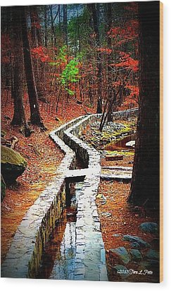 Wood Print featuring the photograph A Walk Through The Woods by Tara Potts