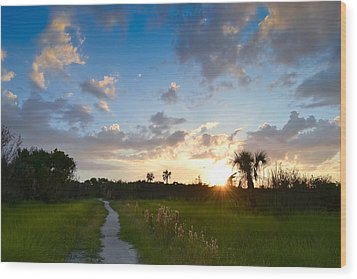 Wood Print featuring the photograph A Walk With You... by Melanie Moraga