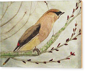 A Waxwing In The Orchard Wood Print