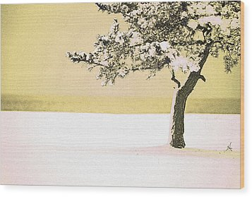 A Winter Moment Wood Print by Karol Livote