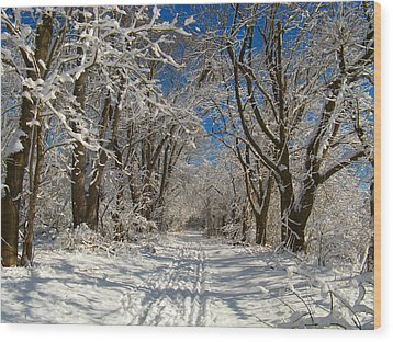 Wood Print featuring the photograph A Winter Road by Raymond Salani III