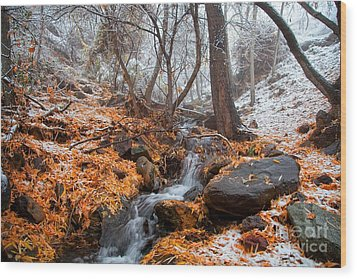 A Winter Scene In Jerome Arizona Wood Print