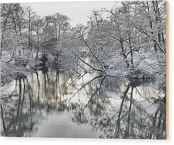A Winter Scene Wood Print
