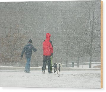 Wood Print featuring the photograph A Winter Walk In The Park - Silver Spring Md by Emmy Marie Vickers