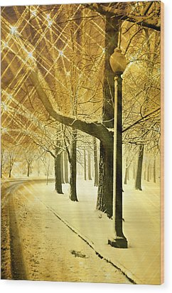 A Winter's Night Wood Print by Marty Koch