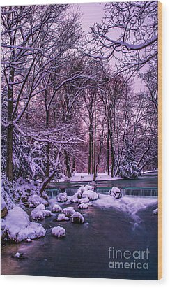 a winter's tale I - hdr Wood Print by Hannes Cmarits