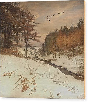 Wood Print featuring the photograph A Winters Tale by Roy  McPeak