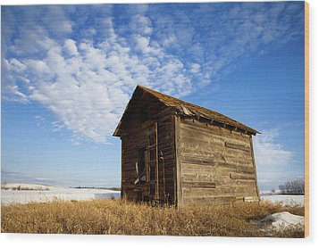A Wooden Shed Stands Alone Wood Print by Steve Nagy