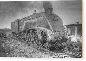 A4 Class 60024 Kingfisher Wood Print