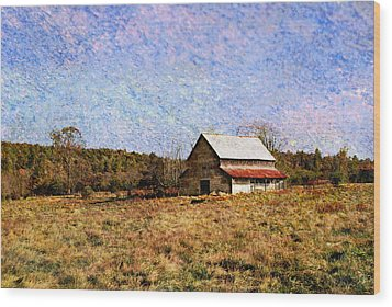 Wood Print featuring the photograph Abandoned Barn In North Georgia by Vizual Studio
