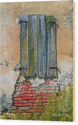 Abandoned Building Wood Print by Patricia Hofmeester