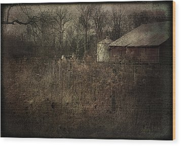 Wood Print featuring the photograph Abandoned Farm by Cynthia Lassiter