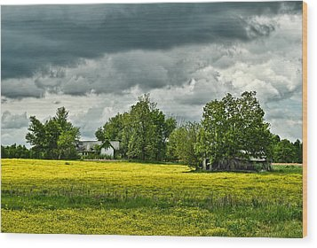 Abandoned Farm In Spring Wood Print