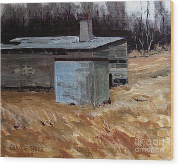 Abandoned Ice House Circa Late 1800.s Wood Print by Charlie Spear