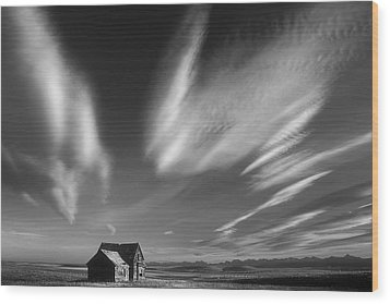 Abandoned In Alberta Wood Print by Inge Riis McDonald