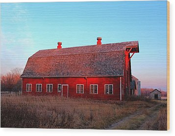 Abandoned Old Red Wood Print by Larry Trupp
