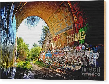 Abandoned Train Tunnel South Of The Old Train Roundhouse At Bayshore Near San Francisco  Wood Print by Jim Fitzpatrick