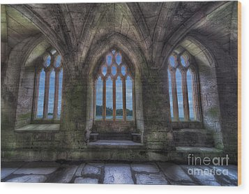 Abbey View Wood Print by Adrian Evans