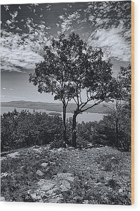 Above Lake George Black And White Wood Print by Joshua House