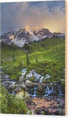 Above Myrtle Falls 3 Wood Print by Sonya Lang