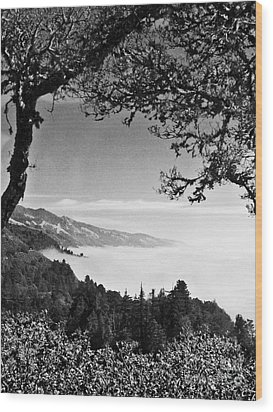 Above Nepenthe In Big Sur Wood Print by Joseph J Stevens