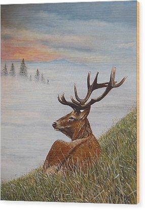 Above The Mist Wood Print by Arie Van der Wijst