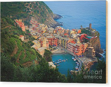 Above Vernazza Wood Print by Inge Johnsson
