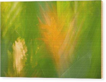 Abstract 9 Wood Print