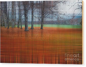 abstract atumn II Wood Print by Hannes Cmarits