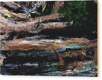Abstract Beach Log Wood Print