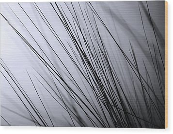 Abstract Black And White Wood Print by Sabina  Horvat