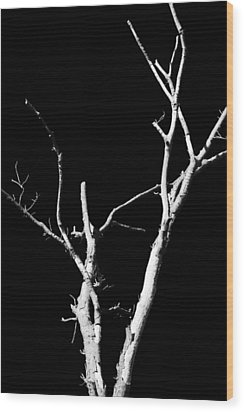 Abstract Branches Wood Print by Maggy Marsh
