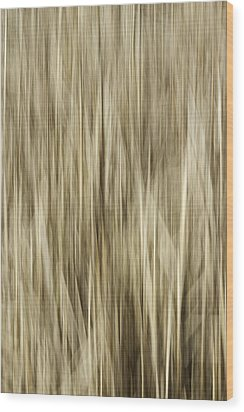 Abstract Cattails Wood Print by Thomas Young