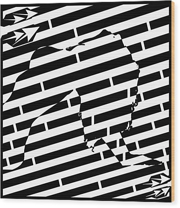 Abstract Distortion Sexy Woman Maze Wood Print by Yonatan Frimer Maze Artist