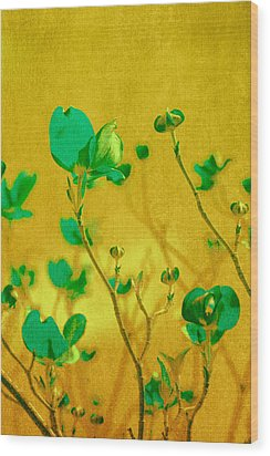 Abstract Dogwood Wood Print by Bonnie Bruno
