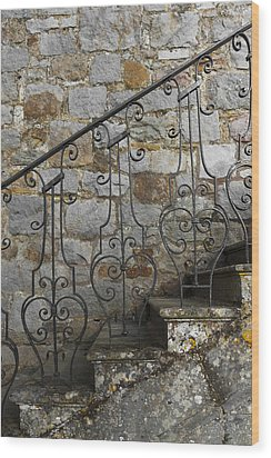 Abstract Exterior  Wood Print by Svetlana Sewell