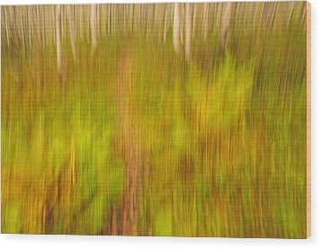 Abstract Forest Scenery Wood Print by Gry Thunes