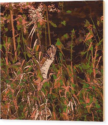 Abstract Heron   Leif Sohlman Wood Print by Leif Sohlman
