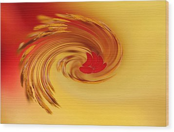 Wood Print featuring the photograph Abstract Swirl Hibiscus Flower by Debbie Oppermann
