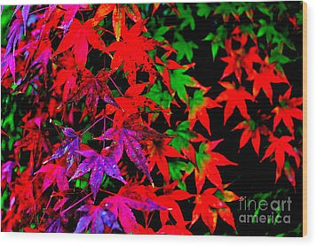 Wood Print featuring the photograph Abstract Leaves by Jay Nodianos