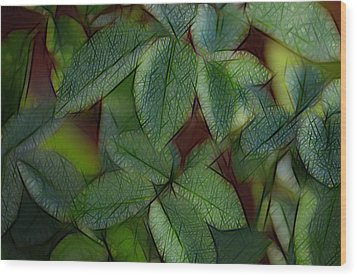 Abstract Leaves Wood Print by Ronald T Williams