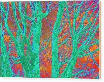 Abstract Maplei Wood Print by Kathy Sampson