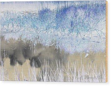Abstract Marsh  Wood Print