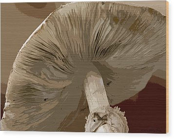 Wood Print featuring the photograph Abstract Mushroom by Kathy Ponce