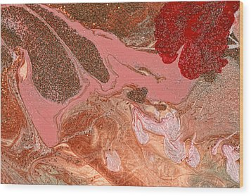 Abstract - Nail Polish - The Flow Of The Universe Wood Print by Mike Savad