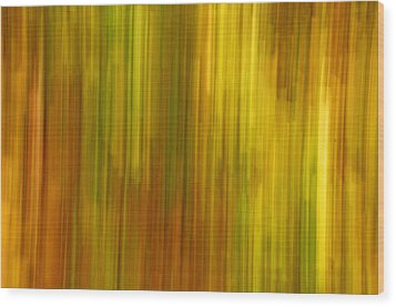 Abstract Nature Background Wood Print by Gry Thunes