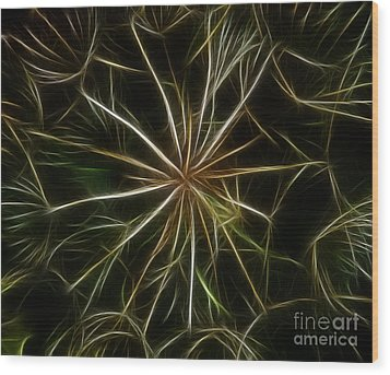 Abstract Of Nature 2 Wood Print by Vivian Christopher