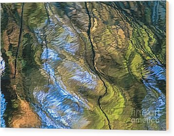 Abstract Of Nature Wood Print by Kate Brown