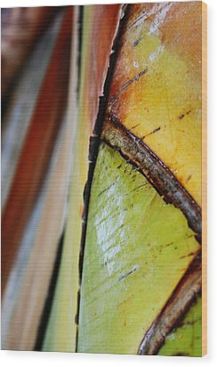 Wood Print featuring the photograph Abstract Palm 2 by Heather Green